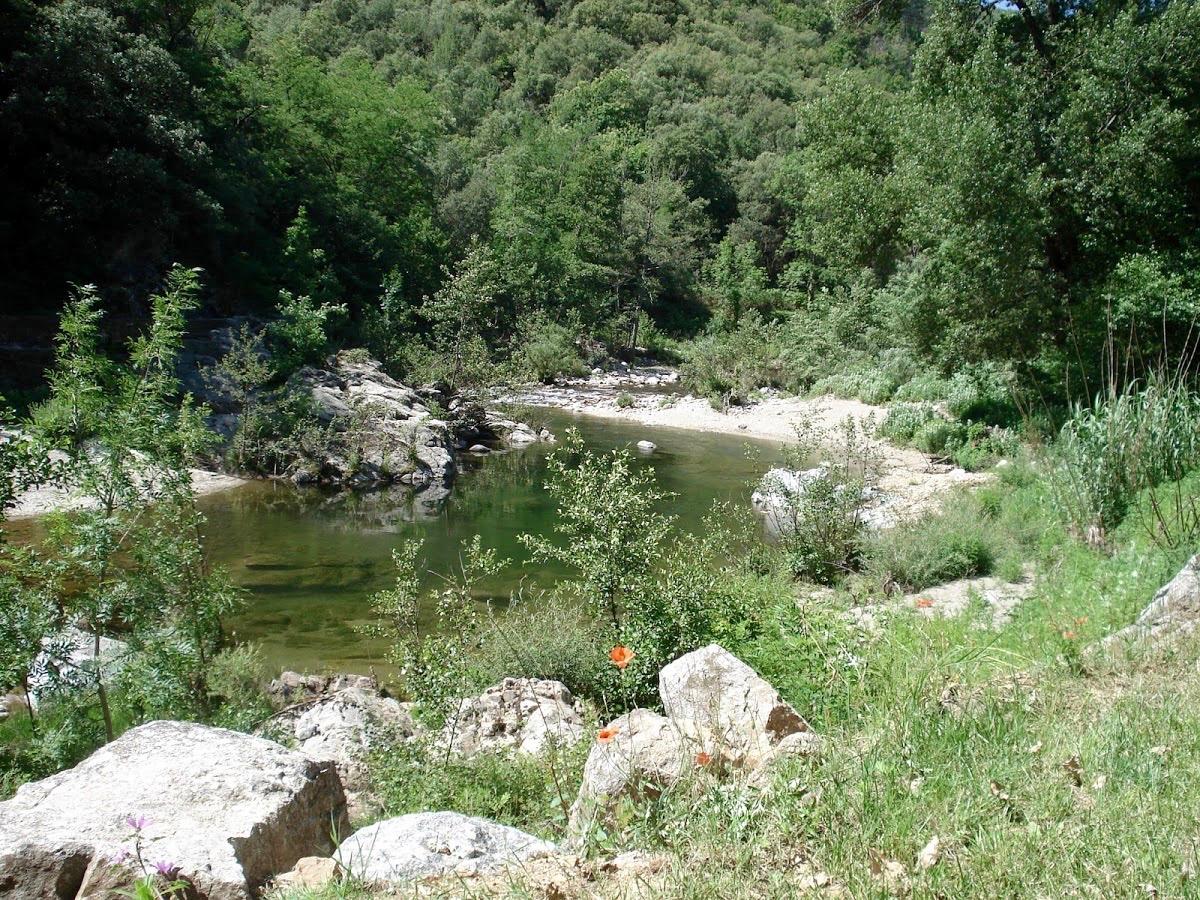 Vue d'un emplacement camping le Petit Baigneur