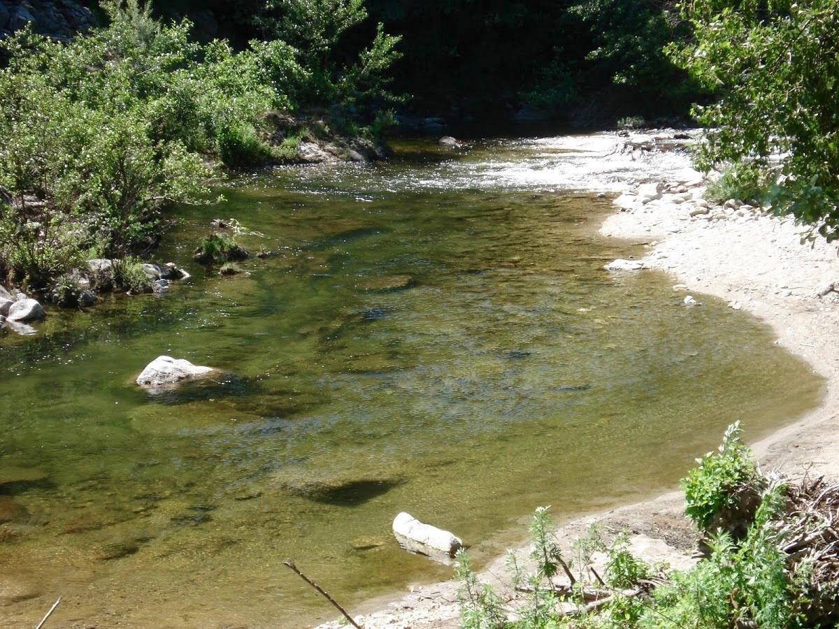 Rivière camping le Petit Baigneur